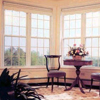 EcoShield Window Systems - Single Hung Windows